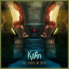 The Paradigm Shift, Korn