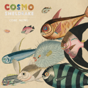 Come Along - Cosmo Sheldrake - Cosmo Sheldrake