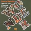 Stevie Wonder - If You Really Love Me Grafik