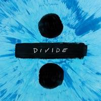 Perfect (Mike Perry Remix) - Single - Ed Sheeran