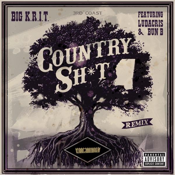 Country Sh*t (Remix) [feat. Ludacris & Bun B] - Single