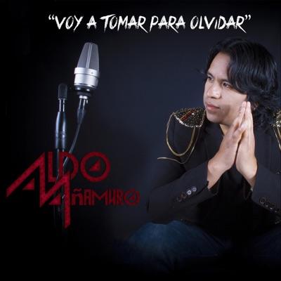Voy a Tomar para Olvidar - Single - Aldo Añamuro