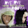 Never Will Be Mine The Remixes feat Robyn