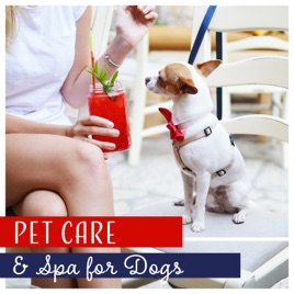 Pet Care & Spa for Dogs Healing Music for Beauty Salon