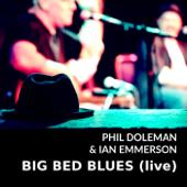 Big Bed Blues (Live)