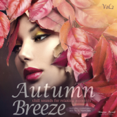 Autumn Breeze Vol. 2  Chill Sounds For Relaxing Moments-Various Artists