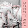 Good Tiger - Nineteen Grams artwork