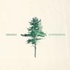 Orango - Evergreens artwork