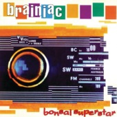 Brainiac - Hot Metal Doberman's