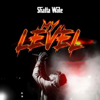 Shatta Wale - My Level artwork