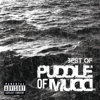 Puddle of Mudd - Blurry (Radio Edit) ilustración