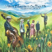 Carolina Blue - Bluegrass Melodies
