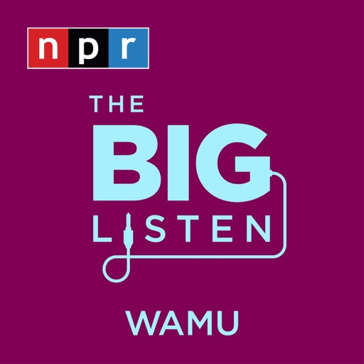Cover image of The Big Listen