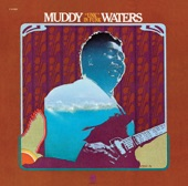 "Muddy Waters - ""Unk"" in Funk"