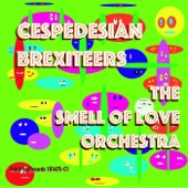 The Smell of Love Orchestra - Short Moon Hop