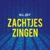 BLØF - Zachtjes Zingen (Giraff Remix) kunstwerk