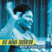 Big Mama Thornton - I Smell a Rat