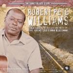 Robert Pete Williams - Graveyard Blues