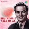Bhulnewale Yaad Na Aa