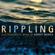Robert Morris: Rippling - Robert Morris