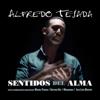 Alfredo Tejada - A Mi Pequeña Lola (Farruca) 插圖