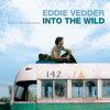 Eddie Vedder - Into the Wild (Music For the Motion Picture) artwork
