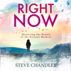Steve Chandler - Right Now: Mastering the Beauty of the Present Moment (Unabridged) grafismos