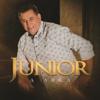Junior - Um Certo Galileu artwork