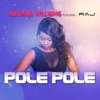 Pole Pole feat Raj Single