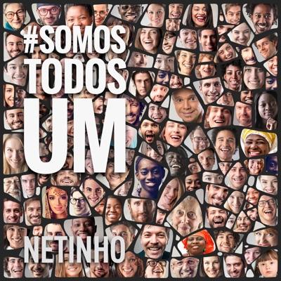 #Somostodosum - Single - Netinho