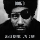 James Booker - Let's Make A Better World(Live)