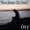 Tere Jaane Ke Baad From Tere Jaane Ke Baad Single
