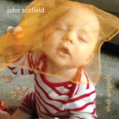 John Scofield - Endless Summer