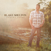 Blake Shelton - Turnin' Me On  artwork