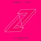 A Different Way (feat. Lauv) [Kayzo Remix] - Single