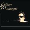 Gilbert Montagné - Les sunlights des tropiques artwork