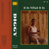 It Is What It Is - Diggy