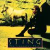 Sting - Shape of My Heart обложка