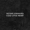 Michael Kiwanuka - Cold Little Heart (Radio Edit) bild