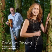 Bluebells Are Blooming by Bríd O'Gorman & Eoin O'Neill on Apple Music