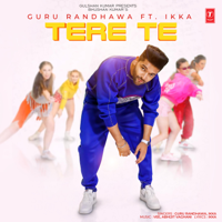 Tere Te - Single