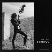 Nick Leng - Lemons