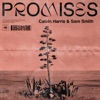 10) Calvin Harris, Sam Smith - Promises