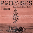 CALVIN HARRIS FEAT. SAM SMITH Promises