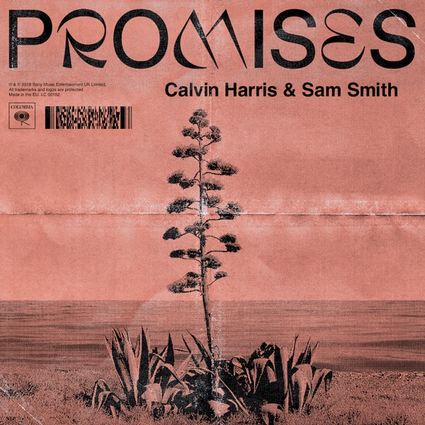 Promises - Calvin Harris, Sam Smith song image