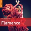 Rough Guide to Flamenco (3rd Edition), 2013