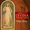 Felipe Gomez - Coronilla a la Divina Misericordia ilustración