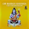 Om Namah Shiivaya For Your Meditation
