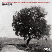 Sly & Robbie & Nils Petter Molvaer - Rock-Stone Noah Bingie