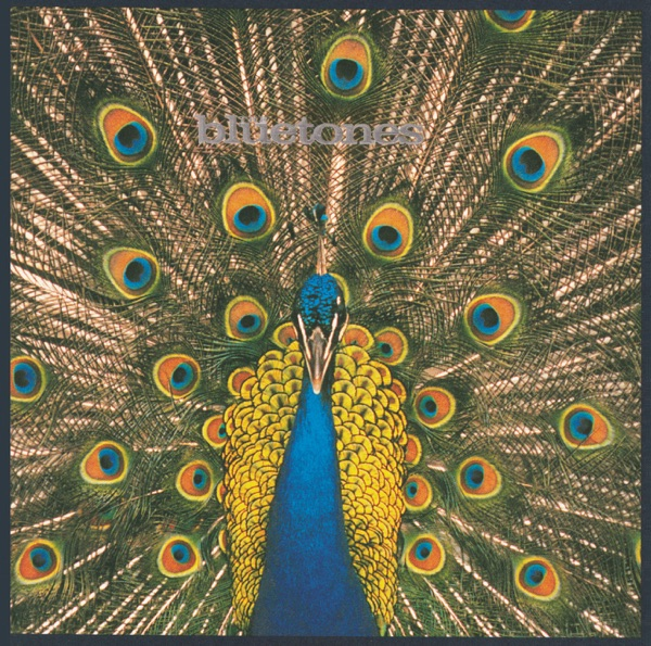Bluetones - Slight Return